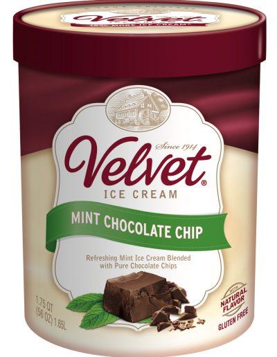 IC Mint Chocolate Chip